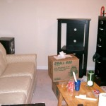 Notice that I've got all the furniture--couch, entertainment stand... file cabinet. >_