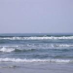 Pretty water 4