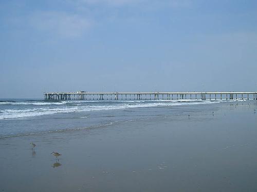 Pretty water towards Venice beach 2
