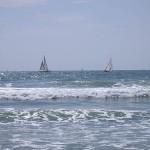 Sailboats 2