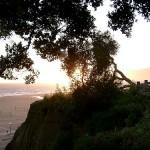 Santa Monica sun