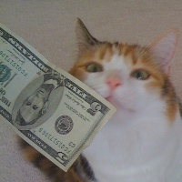 Even Jackie likes to rub money.